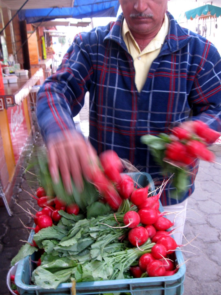 The vendors come around and sell their fresh radishes to the cooks in the market...common in Oaxaca.